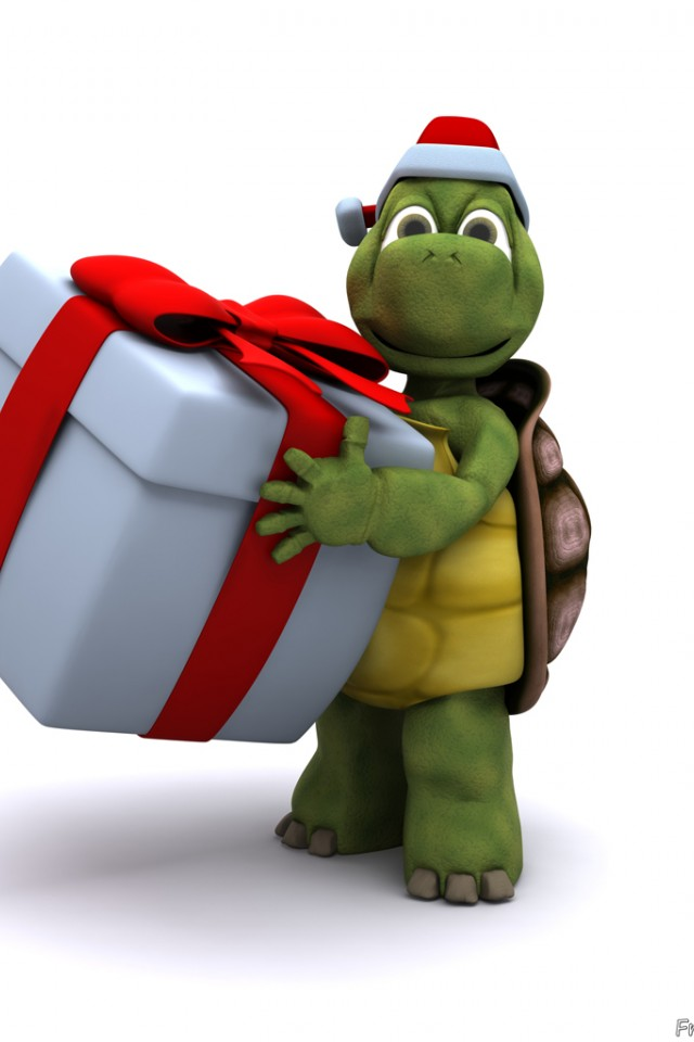 Cute Turtle With Christmas Gift