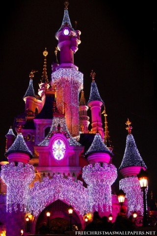 Disney Castle In Christmas