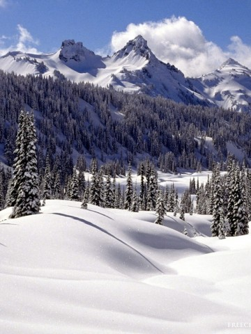 Tatoosh Range At Christmas